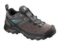 Salomon Shoes X Ultra 3 LTR GTX W